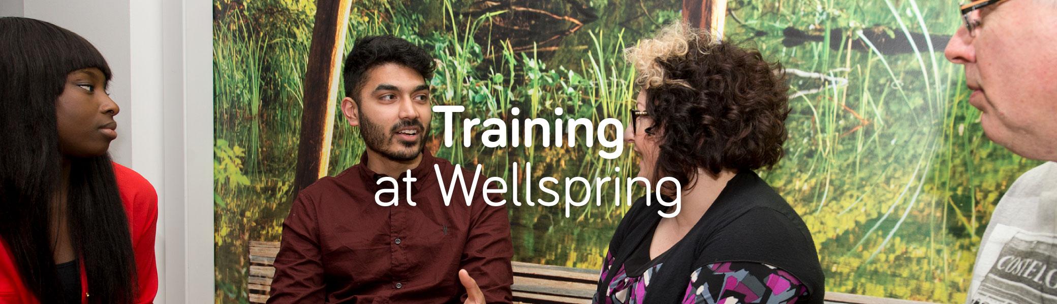 Wellspring-Training-Web_003